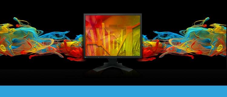 EIZO FlexScanS2133BK (Flexscan-S2133-BK) LCD Display