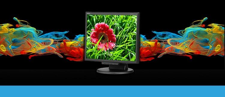 NEC-E171M-BK (NEC-E171M-bk) LED Desktop Monitor