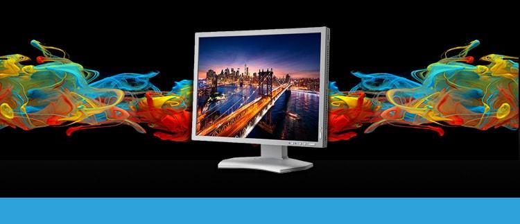 NEC MultiSync-P212SV (P-212-SV) Desktop Monitor