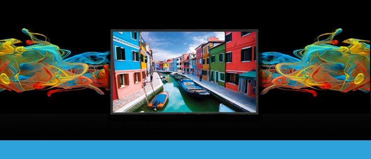 NEC V-463 LED-Backlit High Performance Display