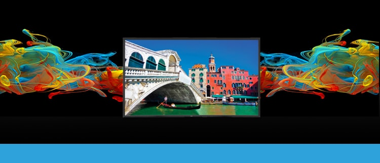 42 Inch NEC V423 High-Performance LED-Backlit Commercial-Grade Display W/ Integrated Speakers