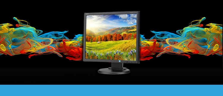 NEC-EA193Mi-BK (EA193MI-BK) LED Backlit CRT Monitor