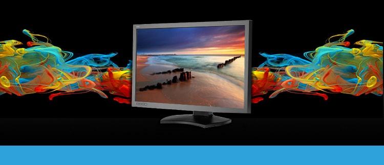 NEC P232-WBK (P-232WBK) Professional Graphics Monitor