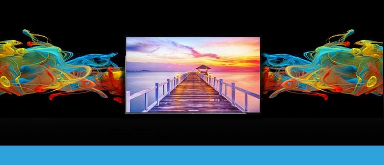 NEC E425 LED Backlit Display