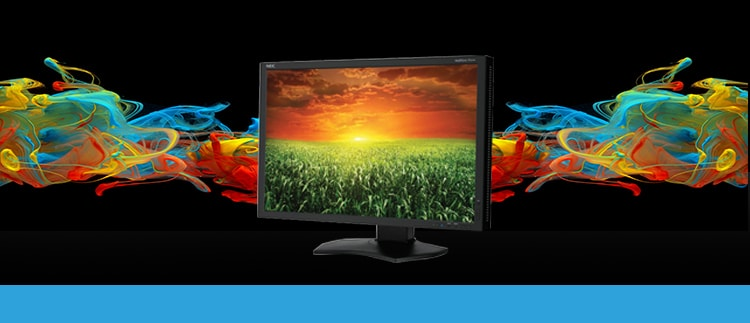 24 Inch NEC P241W-BK LED Backlit IPS Professional Desktop Monitor