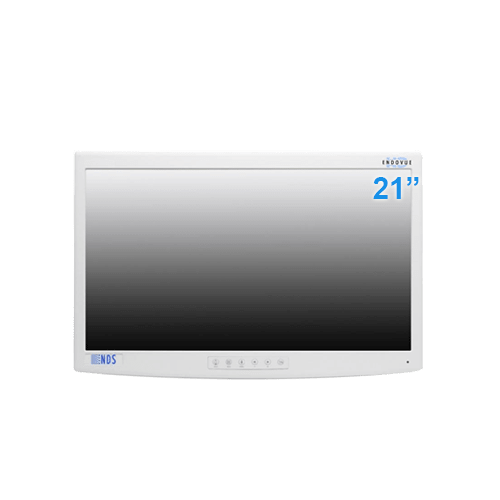 NDS 21 Inch EndoVue Surgical Display