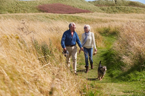 Dog-walking leads to a Higher Risk of Bone Fractures in Older Adults